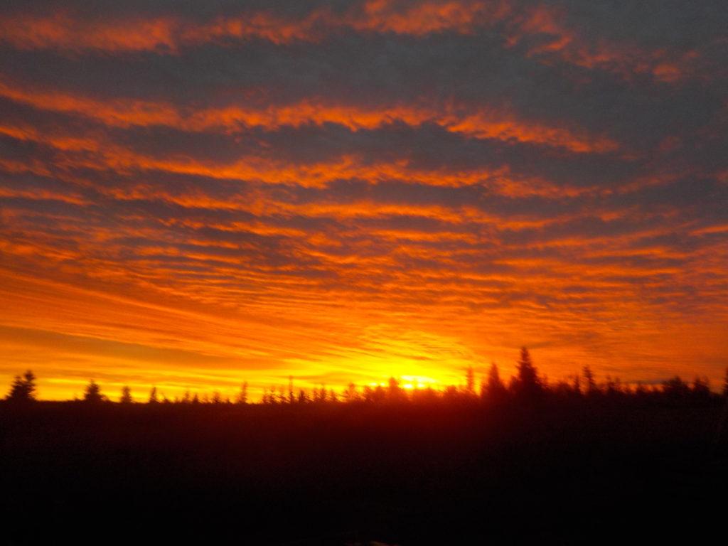 Nyt syksyllä auringonlasku on niin aikaisin, etten ole ehtinyt nukkumaan.